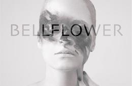 bellflower_SITEN